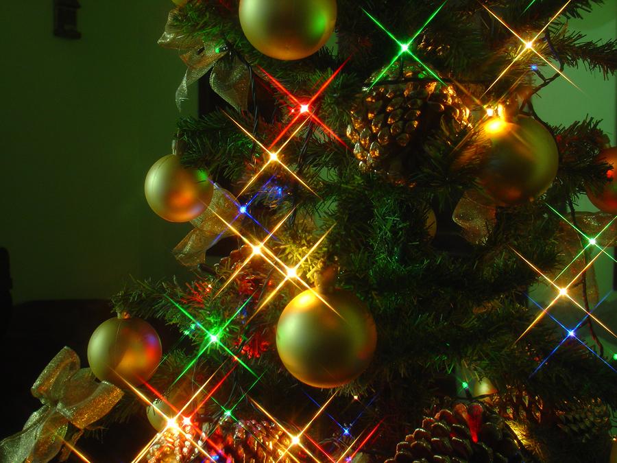 Stromsparen bei der Weihnachtsbaumbeleutung